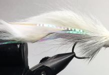 Fly-tying for Smallmouth Bass - Image by Laurin Parker