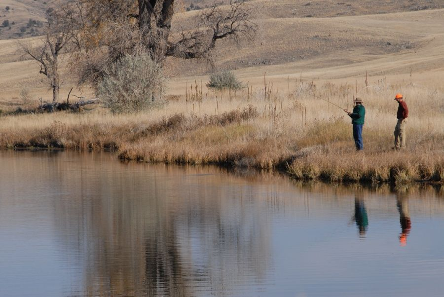 Grey cliffs ranch fly fishing ranch fly dreamers directory for Bozeman mt fly fishing