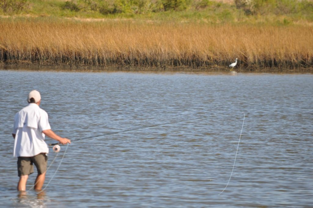 Galveston fly fishing fly fishing guide fly dreamers for Fly fishing houston
