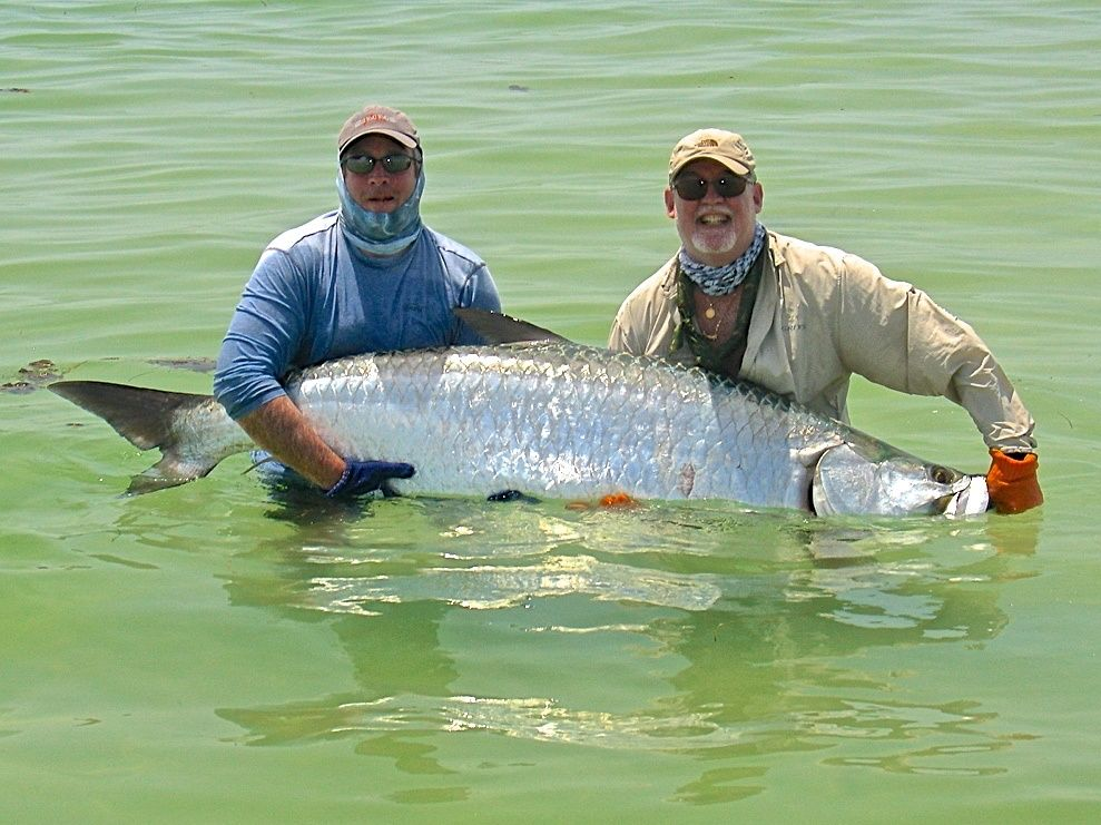 Salty fly charters fly fishing guide fly dreamers for Fly fishing book
