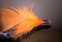 Fly-tying for Flounder - Picture shared by Kellyanne Gill | Fly dreamers