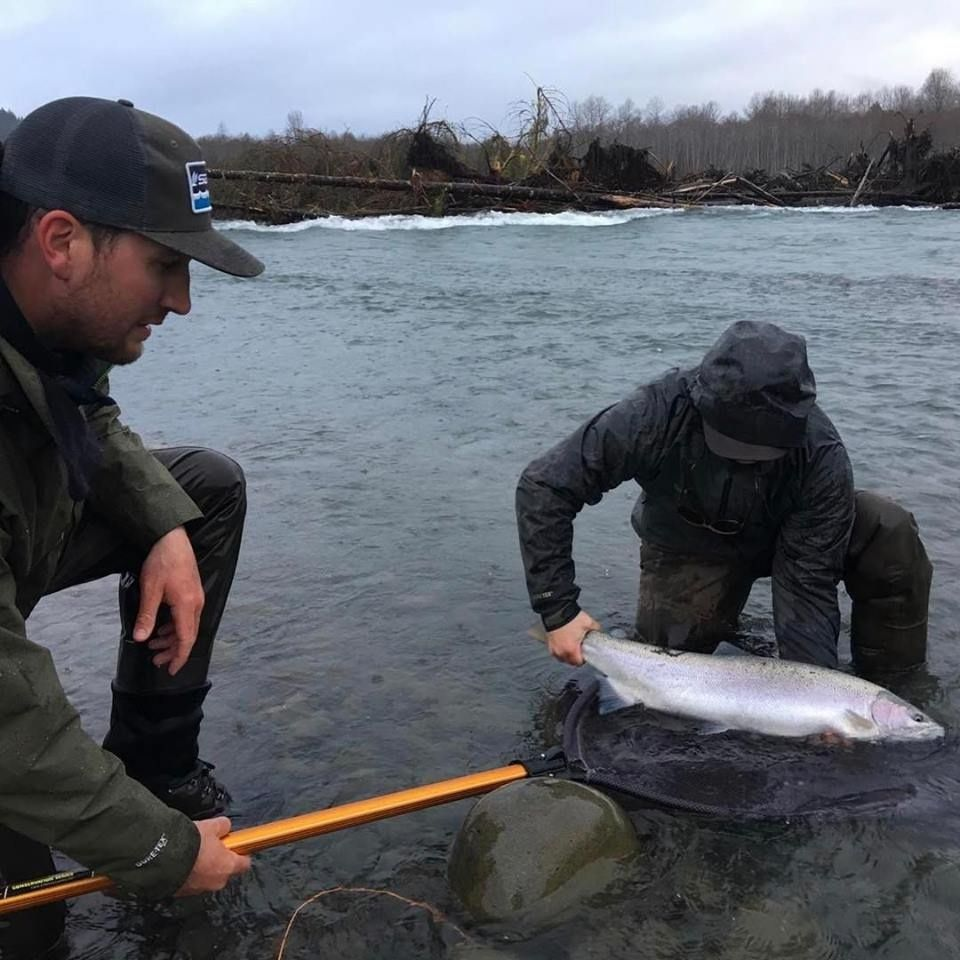 Olympic peninsula fly fishing fly fishing guide fly for Fly fishing washington state