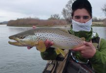 Fly-fishing Picture of European brown trout shared by Jimbo Busse | Fly dreamers