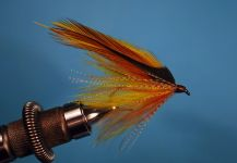 Fly for European brown trout shared by Jimbo Busse | Fly dreamers