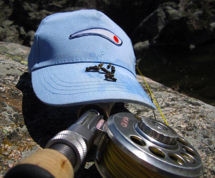 Nice fly fishing entomology image shared by madrid fishing for Fly fishing entomology