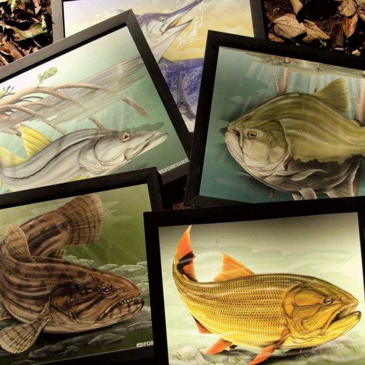 FISH ART... FOR FISHER!!!
