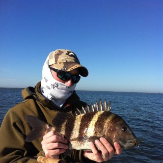 "Jason Bryant with a sheepshead on the fly.  Also known as ""The Texas Permit"" due to their shyness."