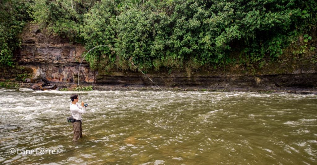 Highland anglers fly fishing outfitter fly dreamers for Fishing in ecuador