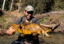 Dion James 's Fly-fishing Photo of a European brown trout | Fly dreamers