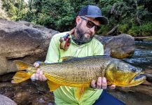Tomasz Talarczyk 's Fly-fishing Picture of a Golden dorado | Fly dreamers