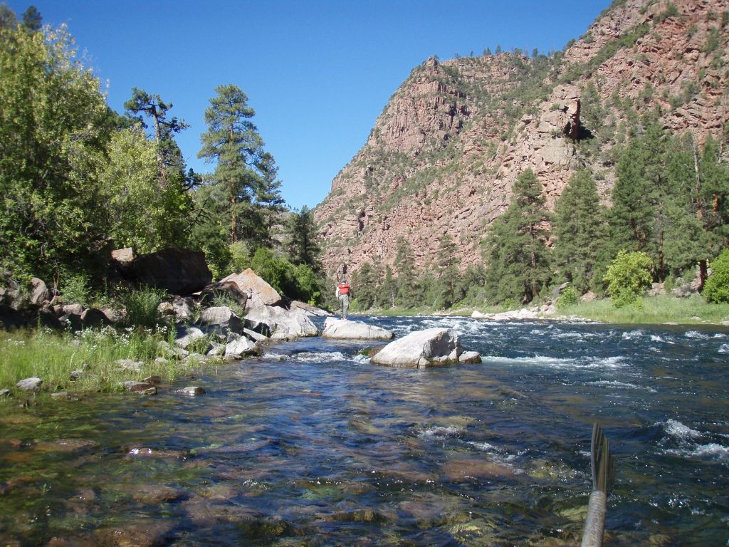 Spinner fall guide service fly fishing outfitter fly for Green river utah fishing