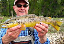 Mark Greer 's Fly-fishing Catch of a Marrones | Fly dreamers