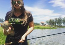 Kid Ocelos 's Fly-fishing Photo of a Nile Tilapia | Fly dreamers