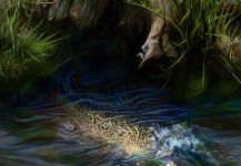 ROBERT CORSETTI - Artist 's Nice Fly-fishing Art Pic | Fly dreamers