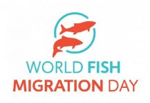 World Fish Migration Day: 21st April 2018