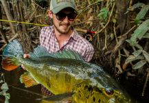 Fergus Kelley 's Fly-fishing Catch of a Peacock Bass | Fly dreamers