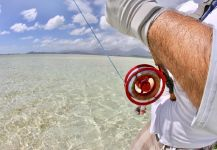 Brandon Leong 's Fly-fishing Image of a Bonefish | Fly dreamers