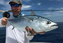David Bullard 's Fly-fishing Photo of a False Albacore - Little Tunny | Fly dreamers