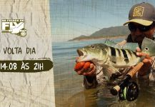 Fly-fishing Image of Peacock Bass shared by Kid Ocelos | Fly dreamers