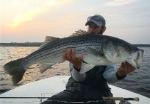 Fly-fishing Situation of Striped Bass shared by Vincent Catalano