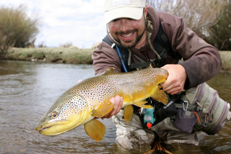 This awesome Brown was caught on a small tributary of the North Platte River in Walden, Colorado.
