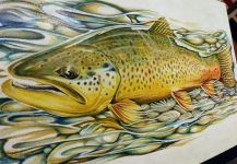 Interesting Fly-fishing Art Picture by Silas Beck