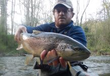 Massimo Sodi 's Fly-fishing Image of a European brown trout | Fly dreamers