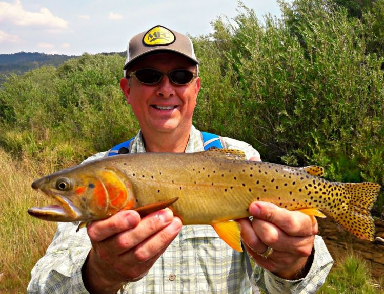 Bonneville Cutthroat - the state fish of Utah.