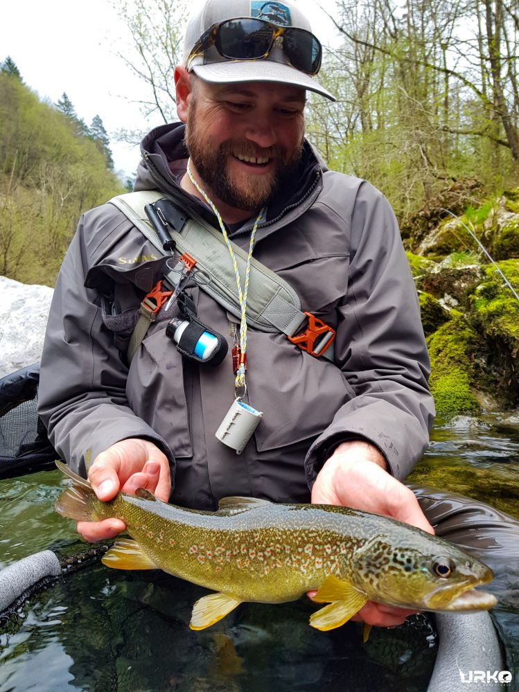 Beautiful hybrid between marble trout and brown trout from the river Idrijca