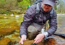 Rainbow trout Fly-fishing Situation – Uros Kristan - URKO Fishing Adventures shared this Cool Image in Fly dreamers