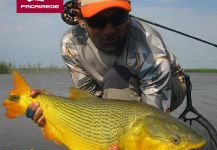 Fly-fishing Photo of Freshwater dorado shared by Kid Ocelos | Fly dreamers