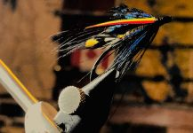 Good Fly-tying Image by Maki Caenis