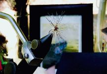 Maki Caenis's Nice Fly-fishing Art Pic | Fly dreamers