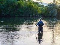 Fly fishing on Cetina
