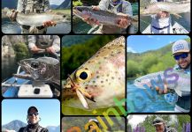 Fly-fishing Pic of Rainbow trout shared by Matapiojo  Lodge | Fly dreamers