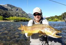 European brown trout Fly-fishing Situation – Matapiojo  Lodge shared this Good Image in Fly dreamers