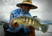 Kid Ocelos 's Fly-fishing Picture of a Peacock Bass | Fly dreamers