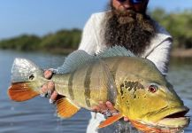 Peacock Bass Fly-fishing Situation – Afloat Fishing shared this Image in Fly dreamers