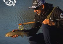 Kid Ocelos 's Fly-fishing Photo of a Rainbow trout | Fly dreamers