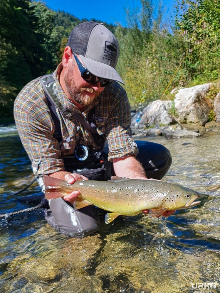 What a year for my favorite trout species, brown trout