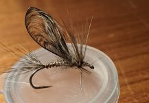 Fly for brown trout - Picture by Walter Engelke | Fly dreamers
