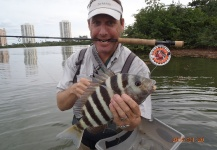 David Bullard 's Fly-fishing Photo of a Sheepshead – Fly dreamers