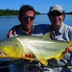 Golden dorado fly fishing in Argentina - Fly dreamers