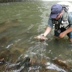 Pesca no Rio do Tigre
