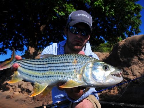 La excusa de pescar Tiger Fish nos sumergió en Zambia, en pleno corazón de África, una región rica y colorida bendecida por una riqueza natural  y cultural que sorprende e invita  a una aventura que nos sumerge sin aviso en el pasado remoto de la Tier...