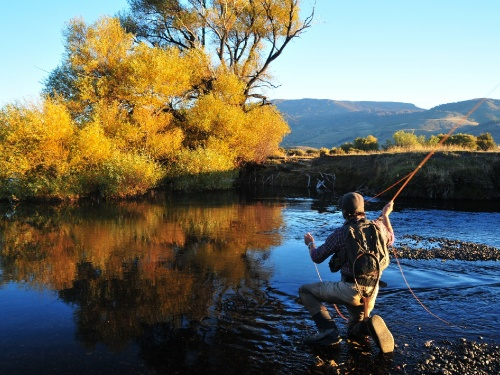 By Marcelo Morales.. Carefully exploring the shores and tails of deep pools or the borders of runs is the best way of finding a big trout, because those are their favorite hunting spots.