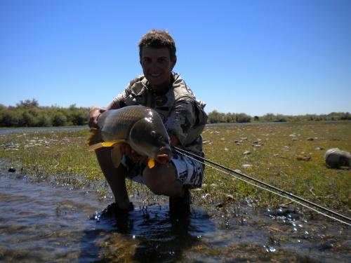 La técnica de pesca a pez Visto. La pesca de carpas en el Limay inferior, es una nueva oportunidad para poder pescar realmente en grande. Este rio, como ya hemos mencionado en la nota anterior, posee una increíble cantidad de peces que hacen que nuestra...