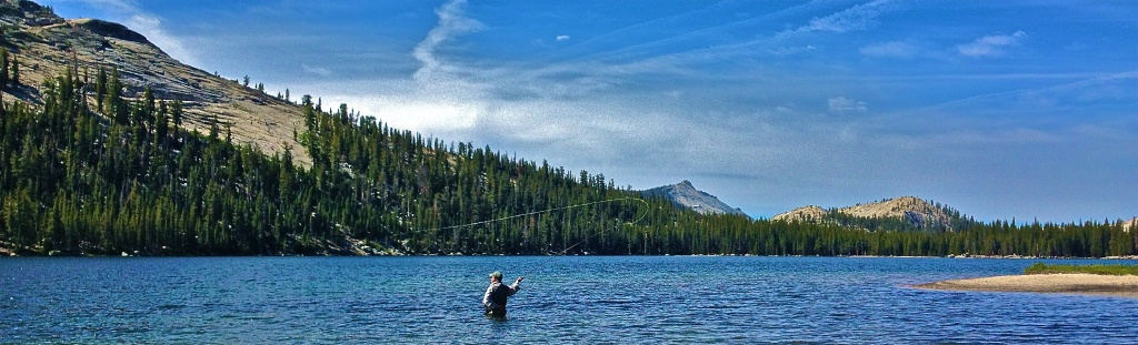Yosemite fly fishing guide fly fishing guide fly for Fishing in yosemite