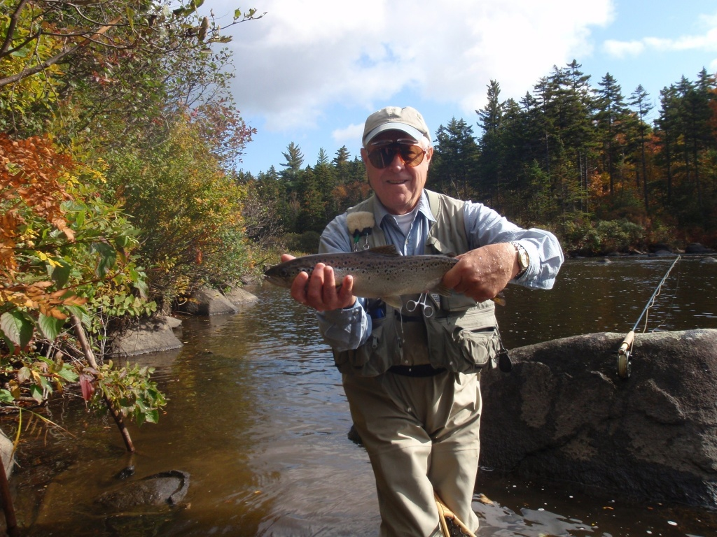Damm brett fly fishing guide fly tying instructor for Fly fishing book