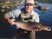Caught on the Miramichi River on a Bomber dry fly and released.